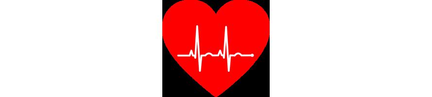 Sistema Circulatorio y Corazón