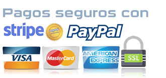 pagos-online-seguros-ssl-paypal-stripe.jpg